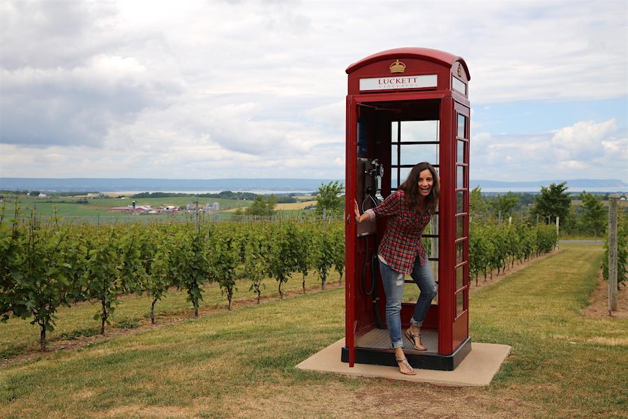 Call someone at the Vineyard Phone box